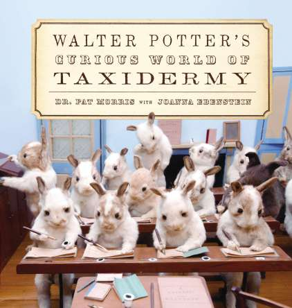 Walter_Potter's_Curious_World_of_Taxidermy